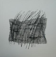 Légères et capricieuses II (40 x 40)