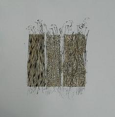 Texture végétale III (50 x 50)