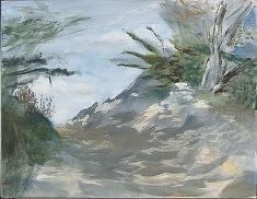 Sous-bois dans les dunes