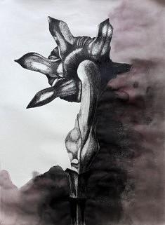 Série Série Noire 15, feutre sur papier, 55x65 cm,  2017