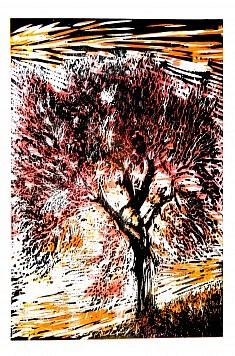L'olivier • gravure sur bois • 50x70cm • 2017