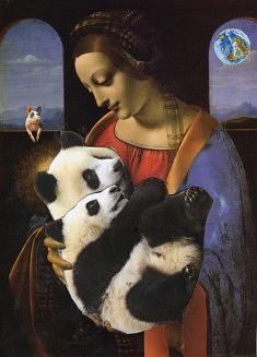 Mes amours de panda