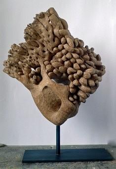LE CRI - Chêne  - H 30 cm -  2012