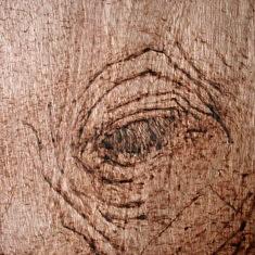 Veille, surveille III extrait pyrogravure sur contreplaqué 2017