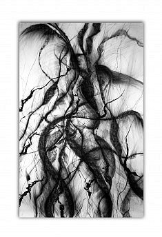 Renaissance - - Encre & Fusain sur papier - 100x160 cm