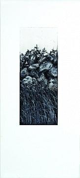 """""""galway gates""""  2 couleurs, 12x30,5 cm  aquatinte gris de payne, et eau forte noir,  tirage 25x55 cm"""