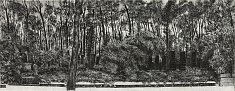 «Jardins des pierres Weissensee II» / 2015  eau forte sur cuivre, matrices 2x 25x65 cm  tirage 25 ex noir sur hahnemühle 52x75 cm