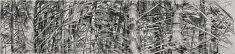 «gardiens des cimes 4» paris 2015   fusain sur papier, 100x425 cm