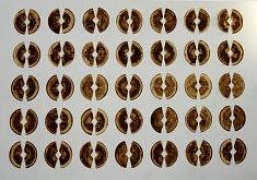 Tranches de vie . 170 x 280 . les Noyaux . 75020 - 2005