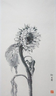 Tournesol - 2008 - encre de Chine - 38 x 70 cm