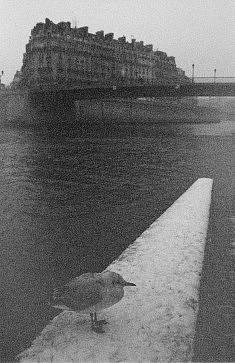 © Claire Mercier- Paris théâtre d'ombres