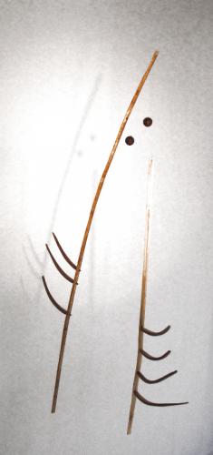 Arêtes, hauteur : 45 cm