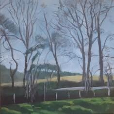 """2020, """"Planter des arbres, Limousin (4)"""", 60x60cm"""