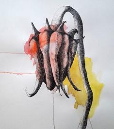 Grand tournesol,  encre de chine et aquarelle sur papier, 50 x 65 cm, 2020