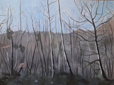 """2020, """"Planter des arbres, Limousin (1)"""", 80x107 cm"""