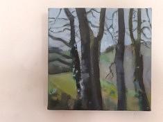 """2020, """"Planter des arbres, Limousin (7)"""", 20x20cm"""