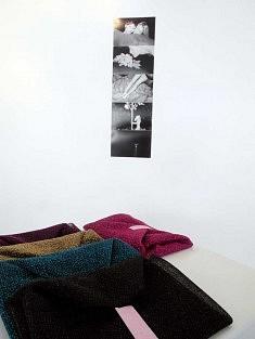 Photographies de Romy Furie (photo Loïs Pommier)