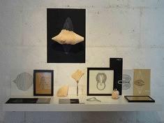 Morgane Le Guillan,  Variations #1, 2018, dessins, mousse (installation : 110x26x80 cm)