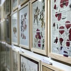 (Français) Collages végétaux par Armelle Claude (photo Armelle Claude)