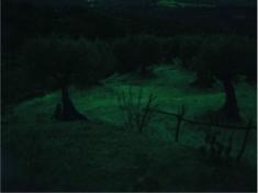 Gabriel de Vienne, Nocturne espagnol 1, Aragon, été, 2019, jet d'encre sur papier Museum etching 350g, 20x30cm