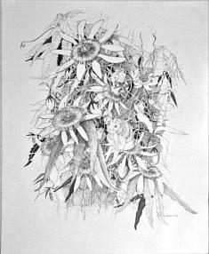 Chantal DELAVILLE, dessin 65X50 cm