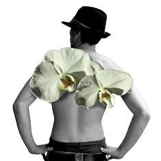 Annie Barel, Orchidée bl., 30X30