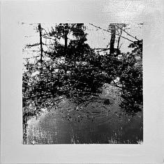 Série Empreintes EM2 - L'étang et l'oiseau, technique mixte sur toile, 40x40x10cm, 2020