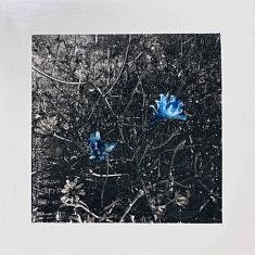 Série Empreintes EM1 - Fleurs bleues, technique mixte sur toile, 40x40x10cm, 2020