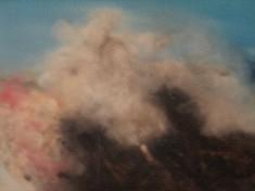 """SERIE  """"La Nature"""" Pastel -2012  24x15 cm"""