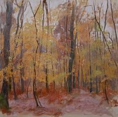 La forêt des Bouillons, hst 80*80 cm