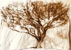 Le pin près de la source. Encre  et brou de noix sur papier japonais. 97 x 67 cm. Mars2020
