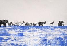 la migration des animaux lithographie sur pierre2017
