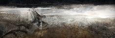 Tropismes  Tirage 30x90 sur papier Hannemuhle FA Rag