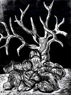 Arbre, Gravure sur bois, 40 x 50 cm, 2018