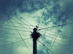 Instant's, Nid électrique [2]