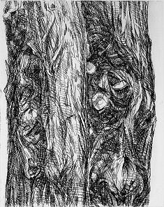 «guardians de les arbredes, parell» 2012 berlin 2012  / eau forte, vernis mou  matrice 40x50 cm  tirage 10 exemplaires sur hahnemühle 57x78 cm