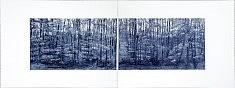 Himmelpforter Tör 1 et 2 / aquatinte, format matrice 2x 30 x 50 cm / tirage monochrome, bleu de prusse / sur BFK rives blanc 2x 50x65 cm