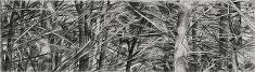 «gardiens des cimes 2» Le martyre de saint sébastien. paris 2014 fusain sur papier, 100x350 cm