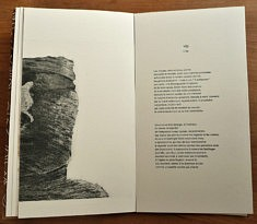 Extrait La Rose Détachée, eau-forte et typographie au plomb