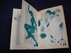 peinture en livre J. Kessel