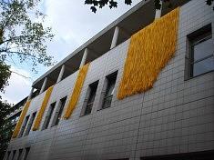 Cascade . Hôpital Jean Jaurès . 75019 - 2012