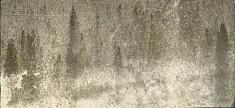 Calme 2 - impression marouflée sur toile 127 x 58 cm