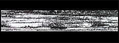 Pastel 3 - pastel gras sur papier encadré, sous verre 97 x 35 cm