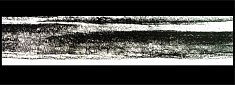 Pastel 4 - pastel gras sur papier encadré, sous verre 97 x 35 cm