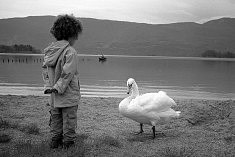 © Pascal Djigo