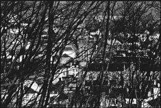 """© Jean Pajot Quimper Ville Natale """"Mon ascension du Mont-Frugy""""  Dimanche 24 février 2019 - Bercé par le chant des oiseaux et sous un soleil éclatant, je gravis le Mont-Frugy qui culmine à 71 mètres. Toutes les cloches de la ville se mettent à carillonner. Emerveillé je contemple ma ville natale. Jean Pajot"""