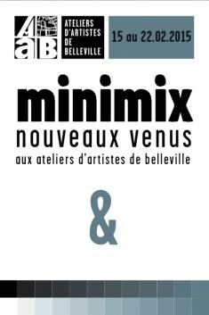 Exposition collective MINIMIX à la galerie des AAB du 15 au 22 février 2015