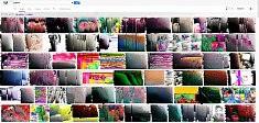 Glitched Google search glitch art